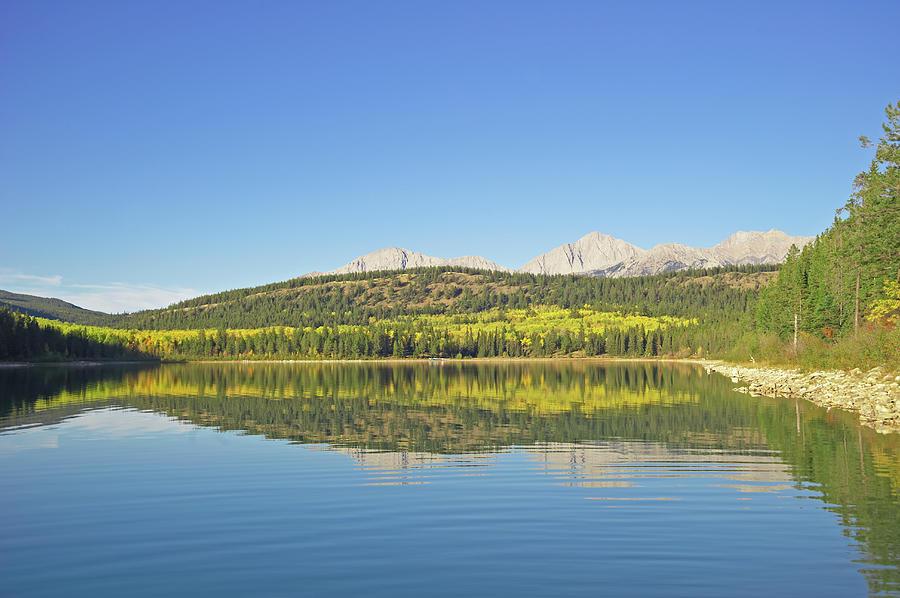 Patricia Lake, Jasper National Park Photograph by Liz Whitaker