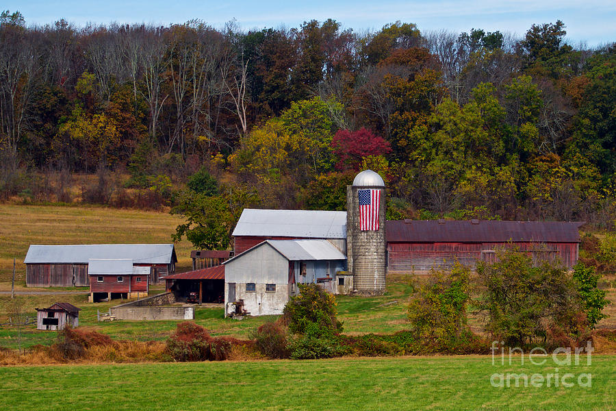 Patriotic Farm 1 by Mark Miller