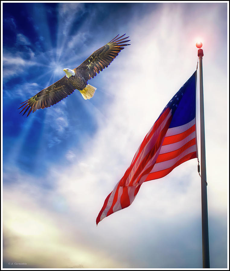 Patriotic Vision, Old Glory and Bald Eagle by A Gurmankin