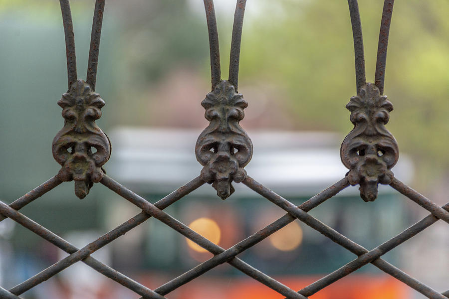 Patterns in Wrought Iron by Douglas Wielfaert