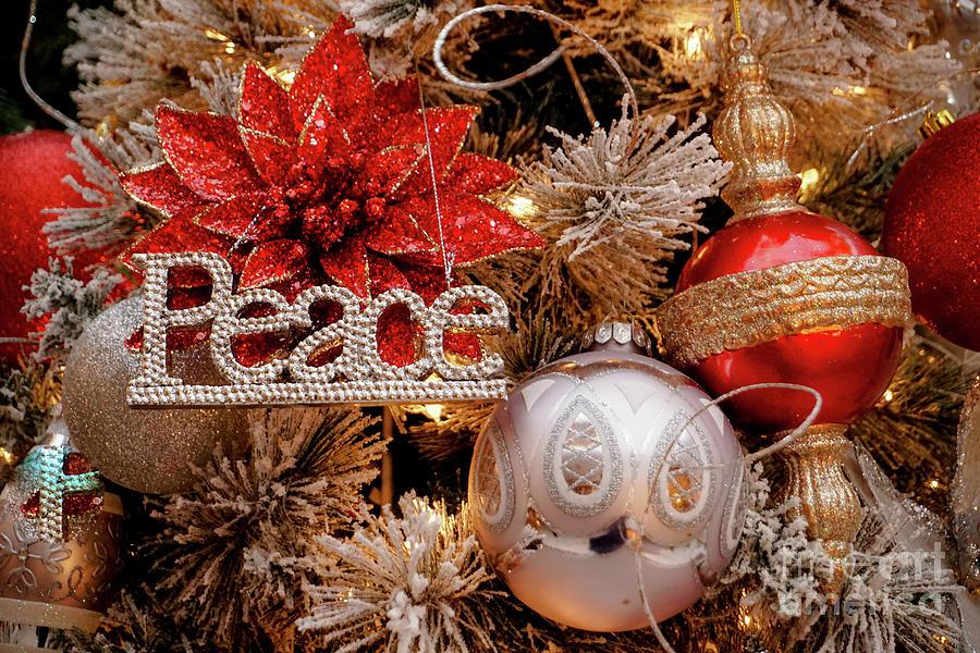 Peace on Earth by Annerose Walz