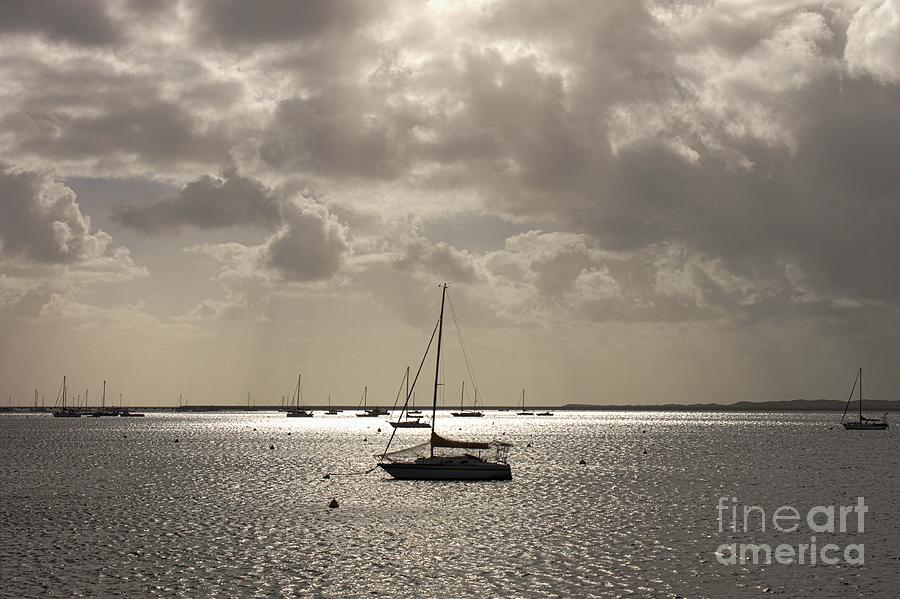 Peace - Yachts On Silver Water  by Carolyn Parker