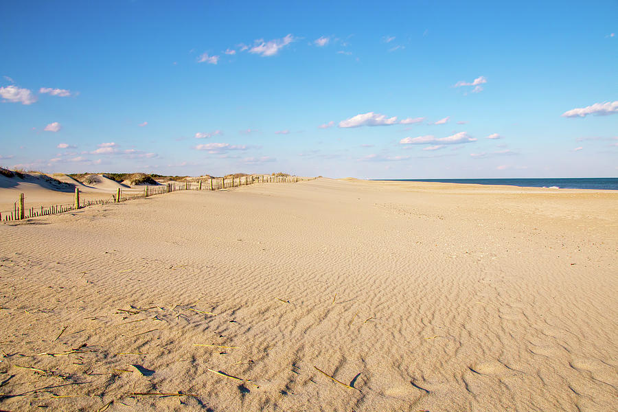 Peaceful Assateague Beach by Kristia Adams