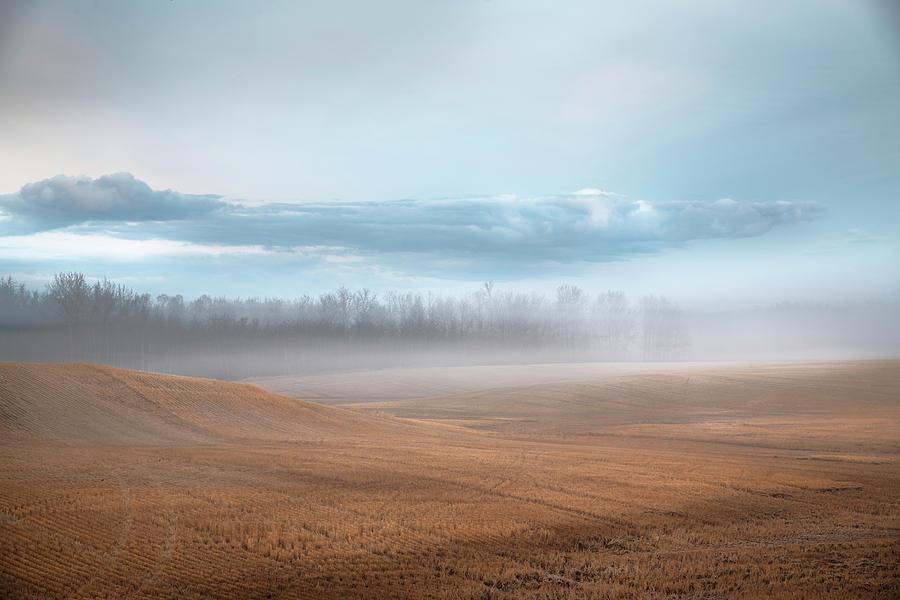 Peaceful Feeling by Dan Jurak