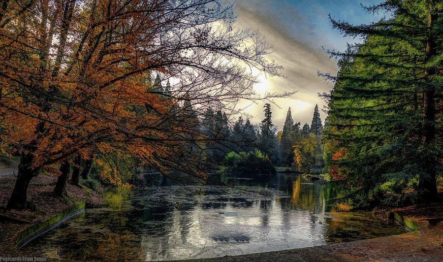 Peaceful by Gaylon Yancy