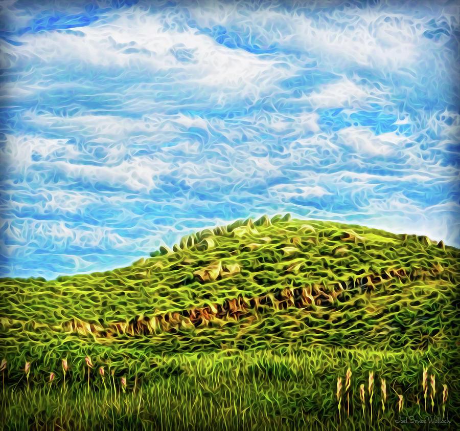 Peaceful Hillside Dreams by Joel Bruce Wallach