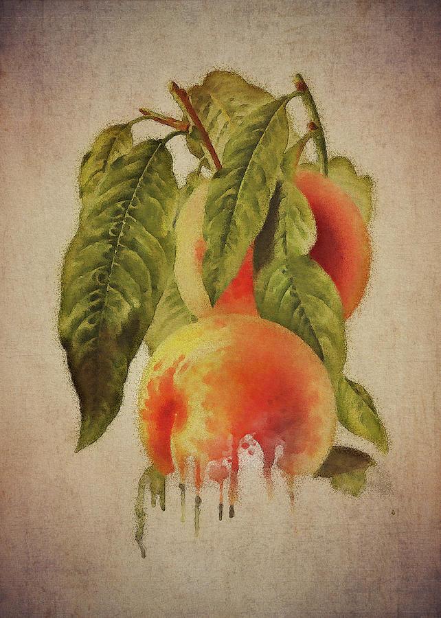 Peach by Jan Keteleer