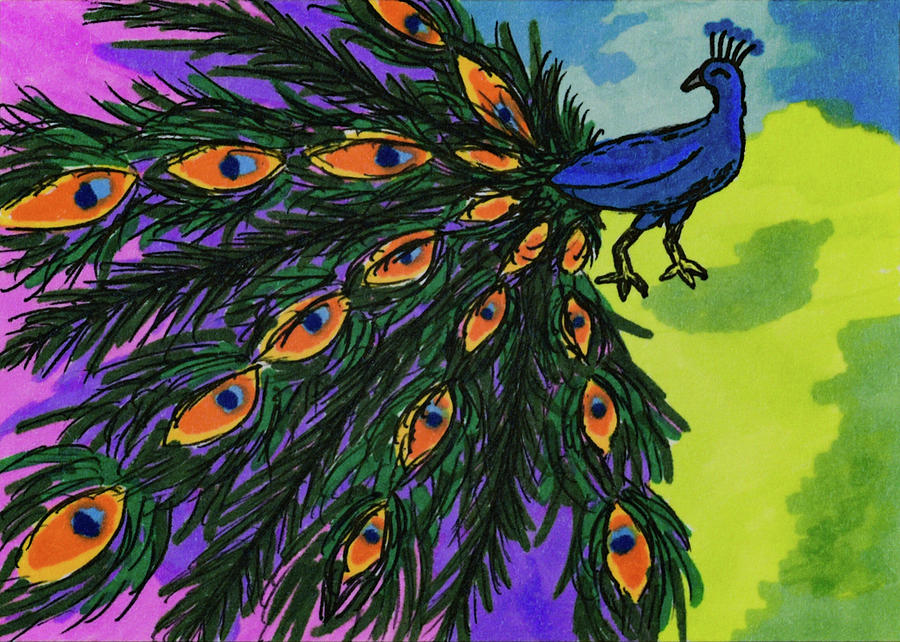 Peacock by Five Owls Gallery