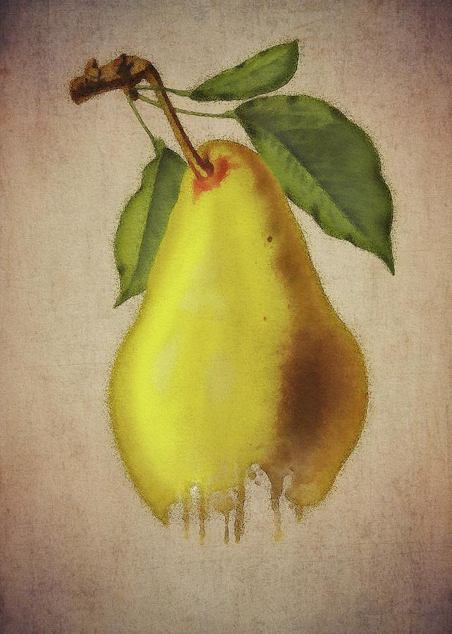 Pear by Jan Keteleer