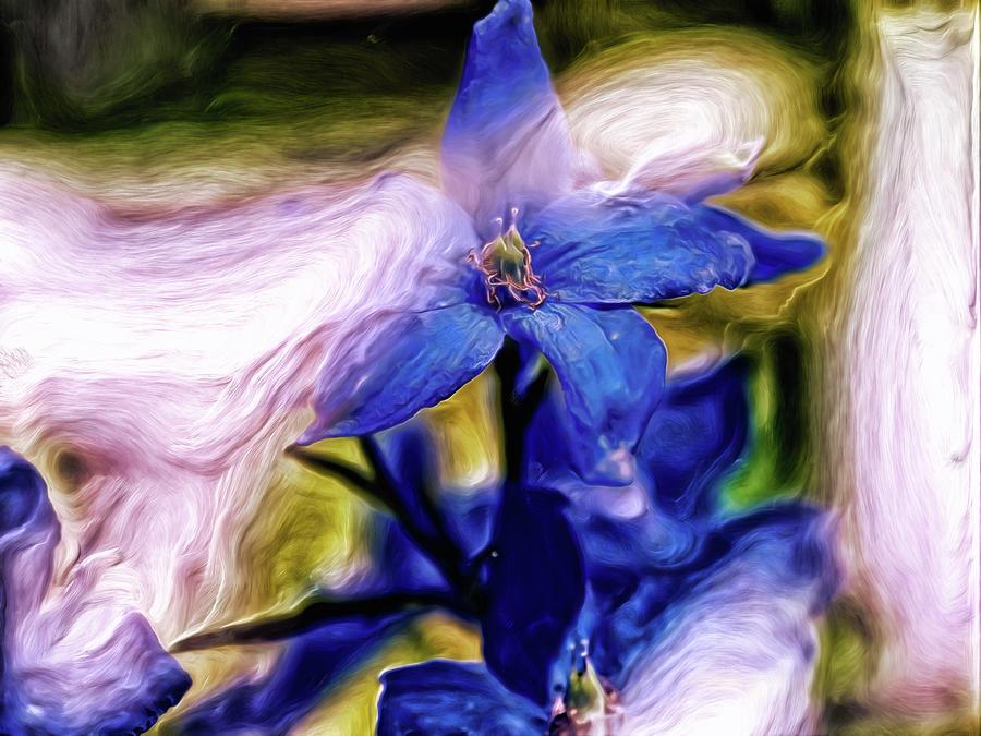 Peek A Blue Digital Art by Doctor MEHTA