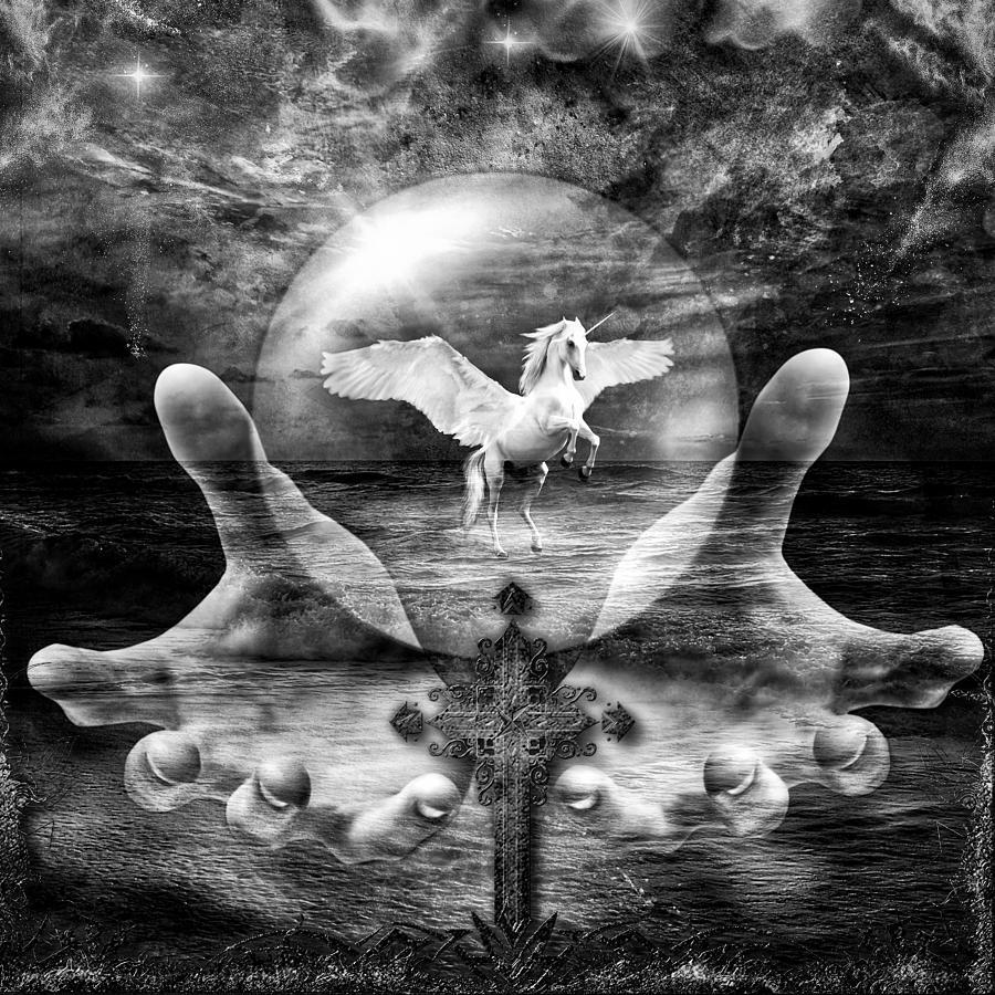 Pegasus BW by Michael Damiani