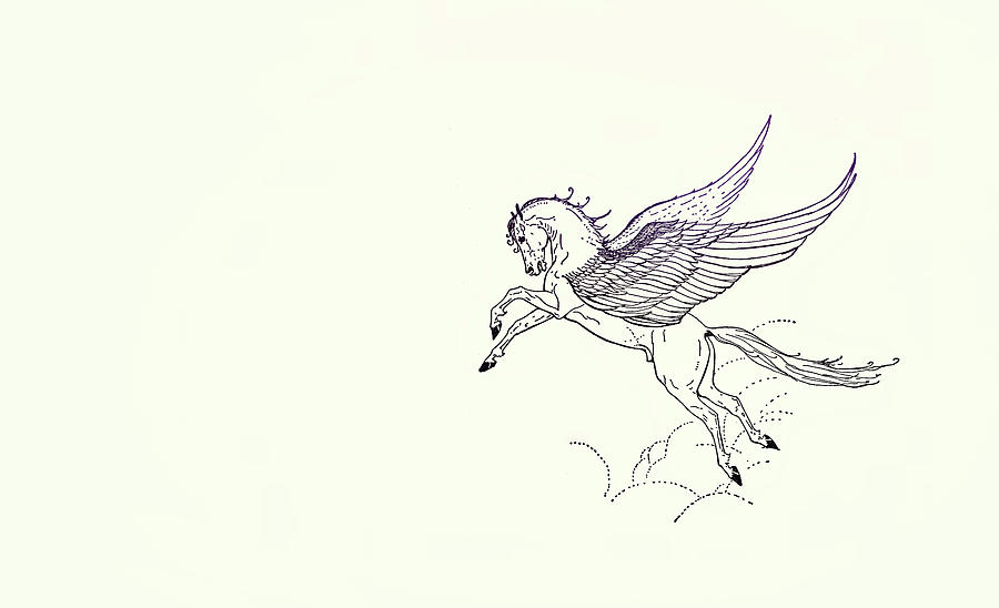 PEGASUS FLY by Dressage Design