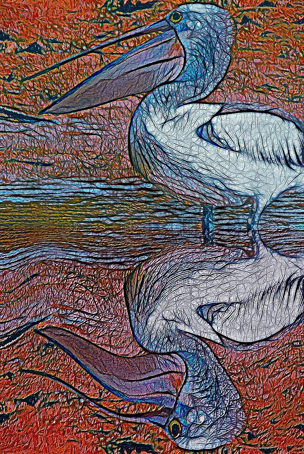 Pelican Reflection by Joan Stratton