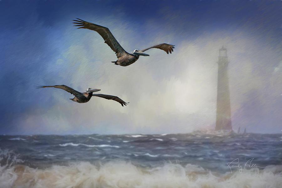 Pelican Storm by Randall Allen