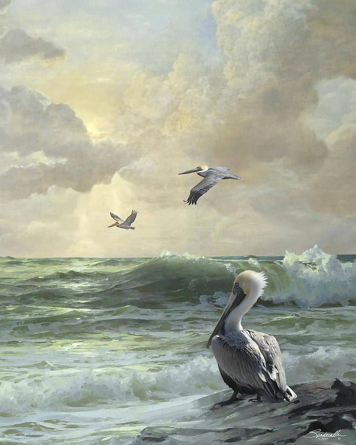 Florida Digital Art - Pelicans In The Surf by Spadecaller