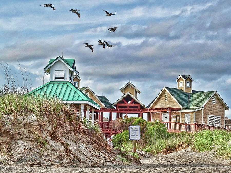 Pelicans over St. James Beach Club by Don Margulis