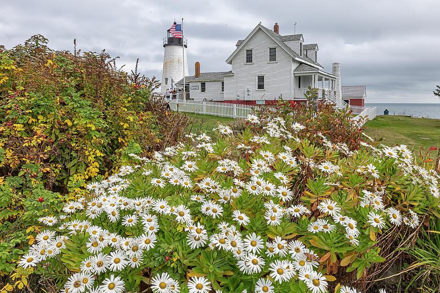 Pemaquid Photograph - Pemaquid Point Light by Bob Doucette