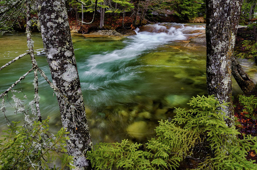 Pemigewasset River N H Earth Day by Michael Hubley