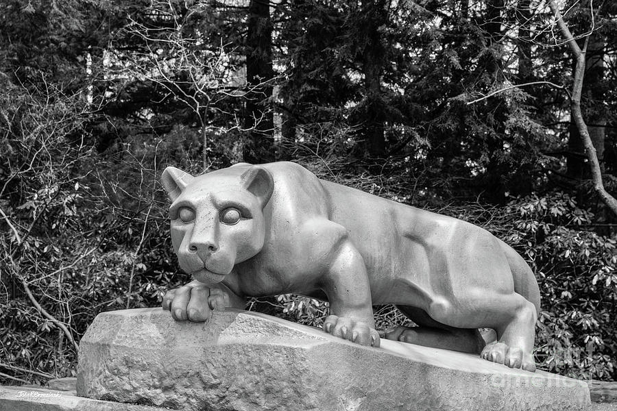 Pennsylvania State University Nittnay Lion by University Icons