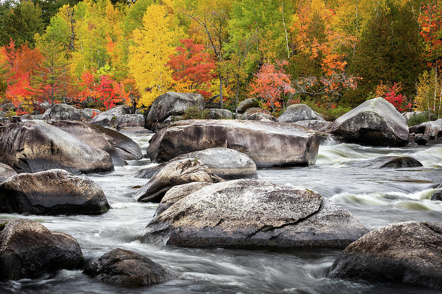 Penobscot River Autumn  by Colin Chase