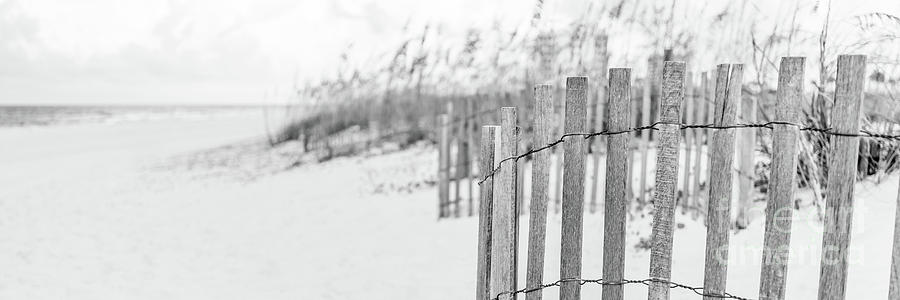 America Photograph - Pensacola Beach Fence Black And White Panoramic Photo by Paul Velgos