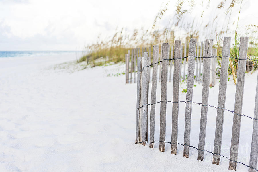America Photograph - Pensacola Florida Beach Fence Photo by Paul Velgos