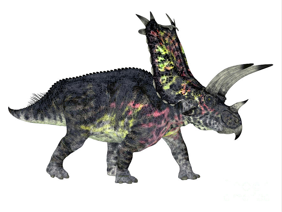 Pentaceratops Dinosaur Side Profile by Corey Ford