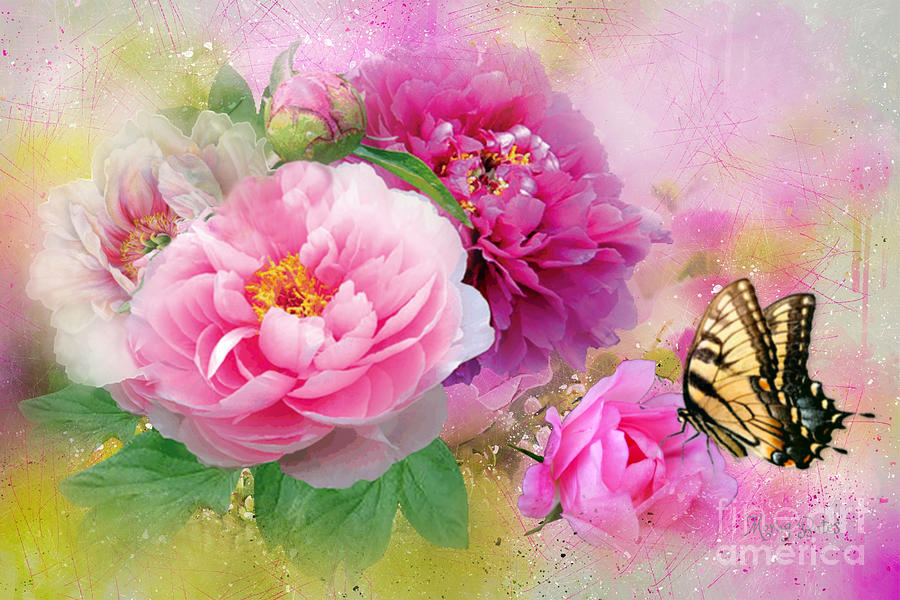 Peonies and Butterfly by Morag Bates