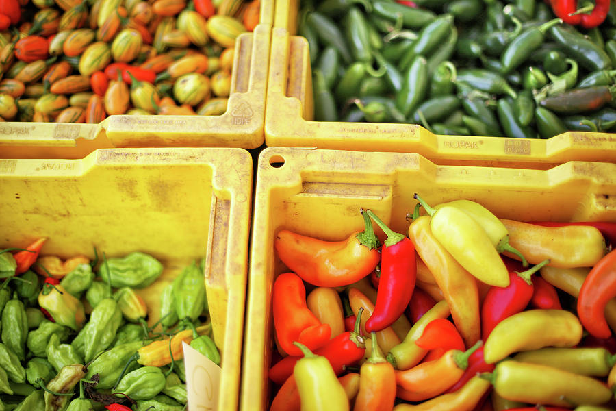 Peppers Capsicum And Tomatoes At Photograph by Nicole Kucera