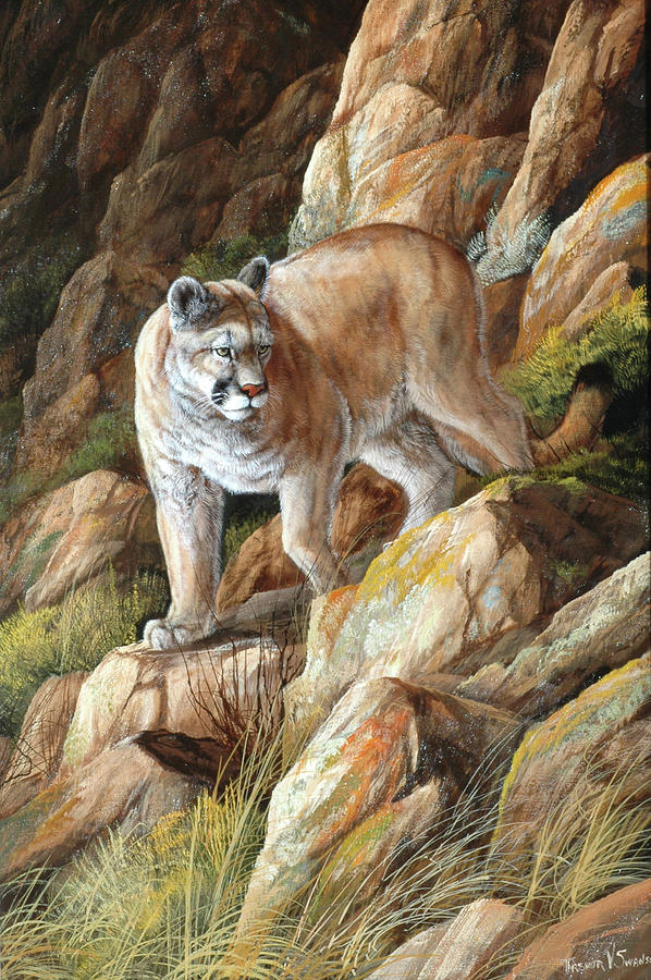 Wildlife Painting - Perfect Camouflage by Trevor V. Swanson