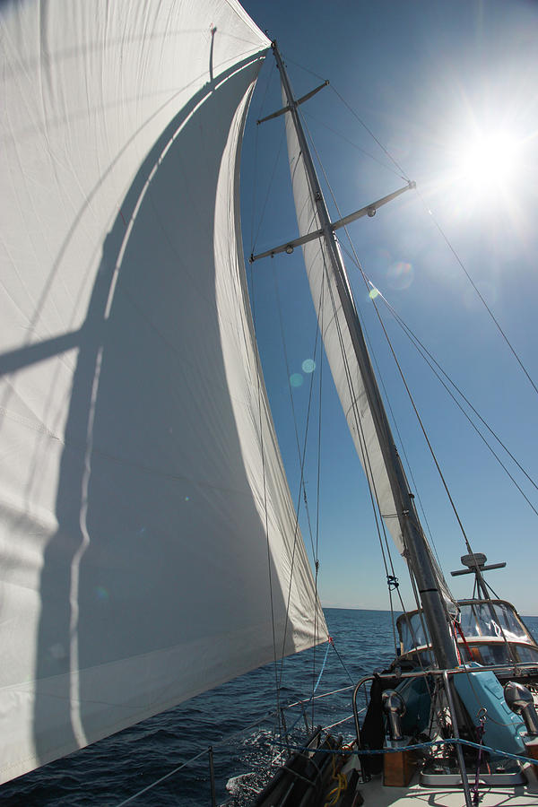 Perfect Sailing Under a Blazing Sun by Pacific Northwest Sailing