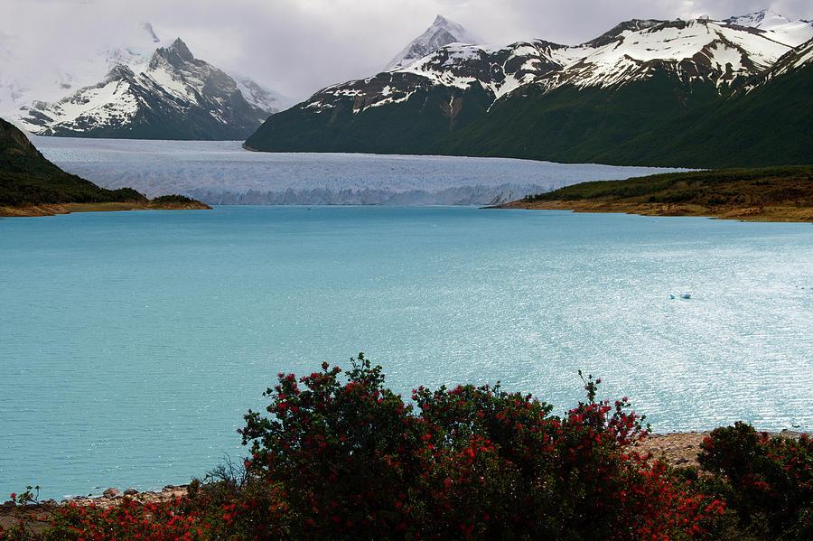 Perito Moreno Photograph by Antonio Vaccarini