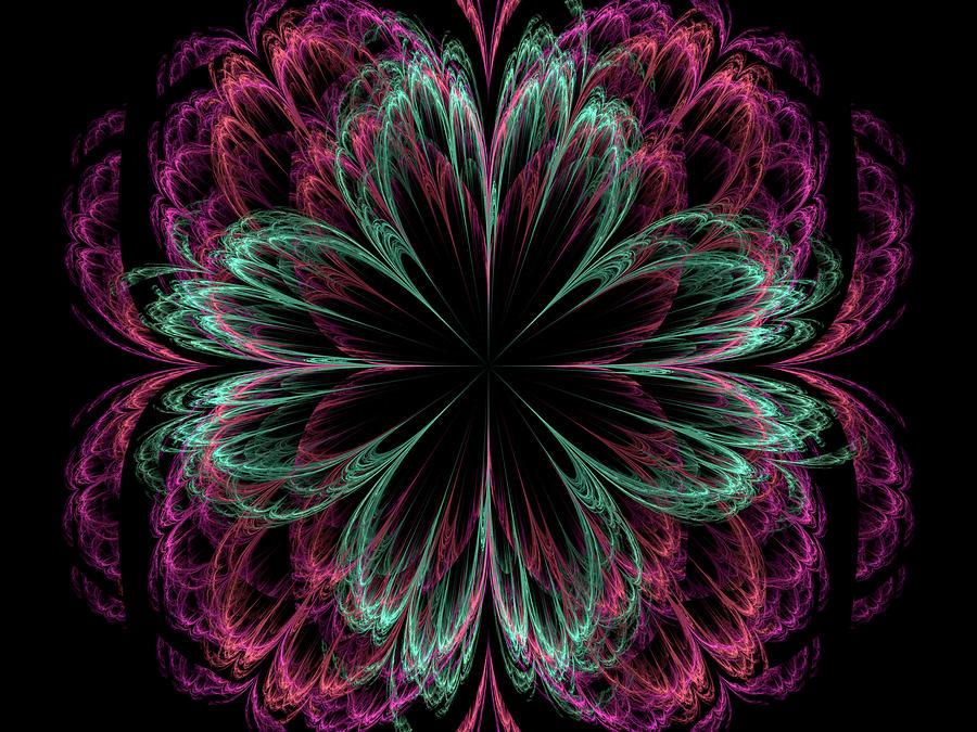 Petals of Love by Richard J Cassato