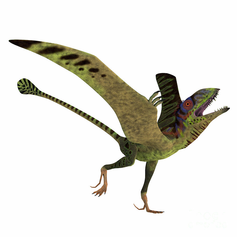 Peteinosaurus Reptile Mating Display by Corey Ford