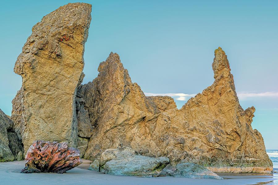 Bandon Beach Photograph - Petrified Tree Root Ball by Jim Thompson