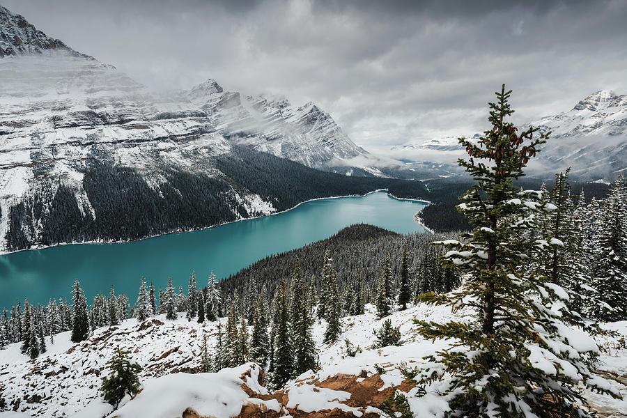 Peyto Lake in Banff National Park, Canada by Kamran Ali