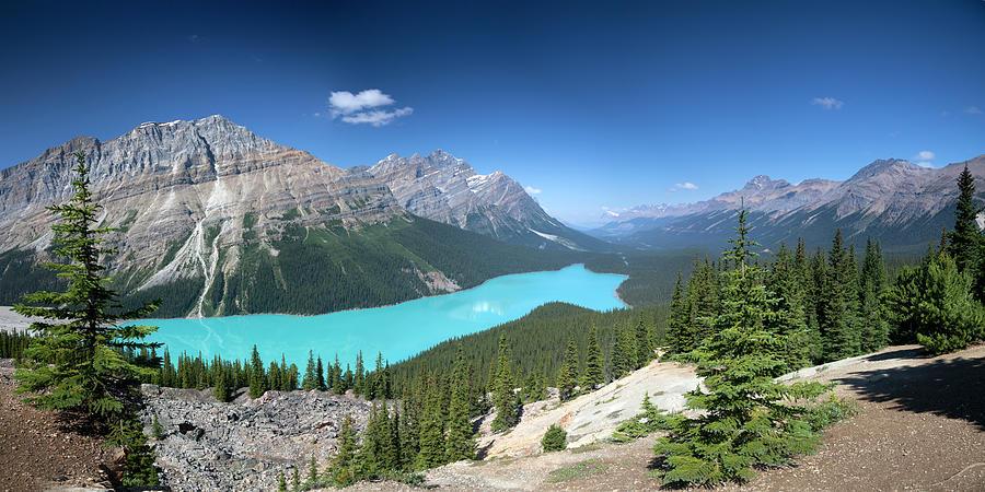 Peyto Lake Panorama, Banff National Park Photograph by Dan prat