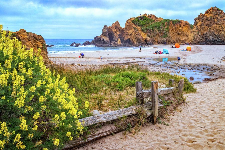 Pfeiffer Beach in Big Sur by Carolyn Derstine
