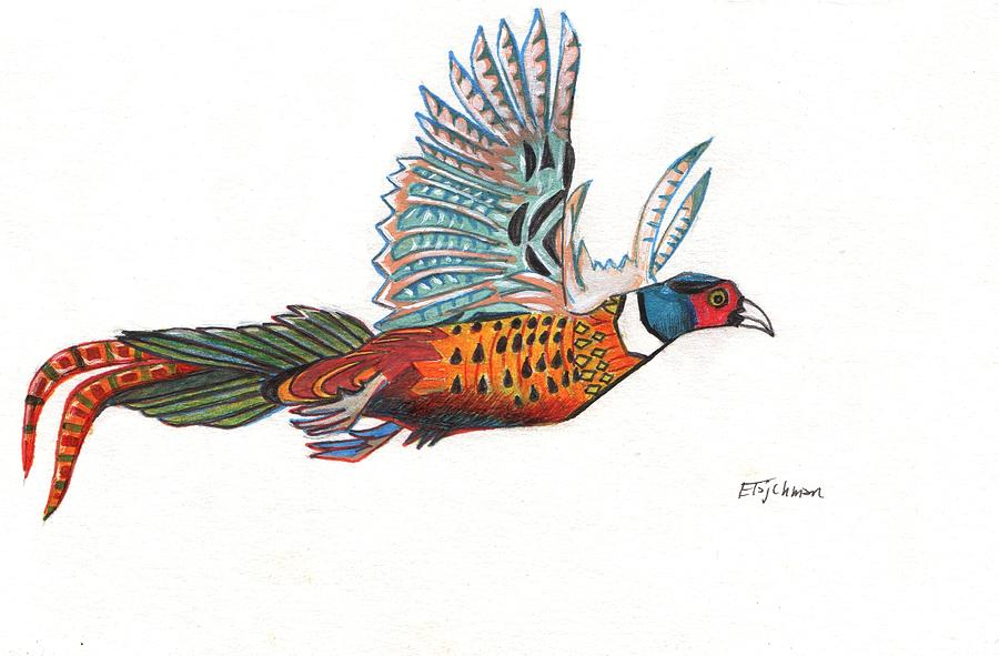Pheasant Painting - Pheasant by Ed Tajchman
