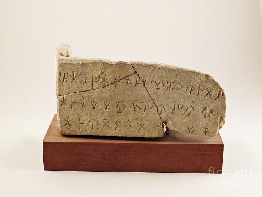 Artefact Photograph - Phoenician Limestone Inscription From Cyprus by Metropolitan Museum Of Art/science Photo Library