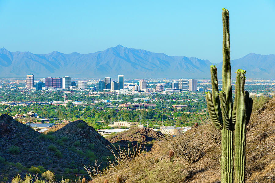 Phoenix Skyline Framed By Saguaro Photograph by Dszc