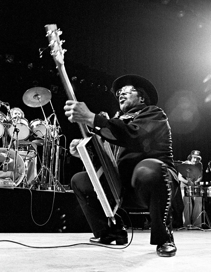 Photo Of Bo Diddley Photograph by Ed Perlstein