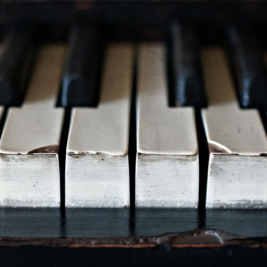Piano Keys Photograph by Julie Rideout