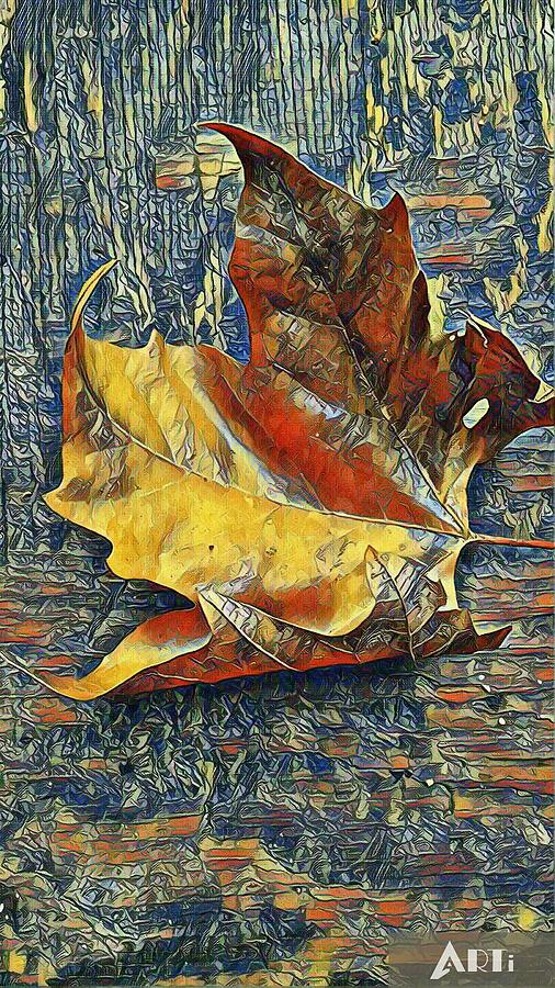 Picasso leaf by Steven Wills