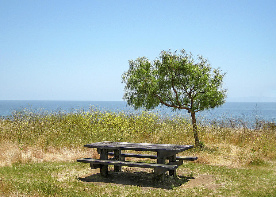 Picnic Table with a View by Mariola Szeliga