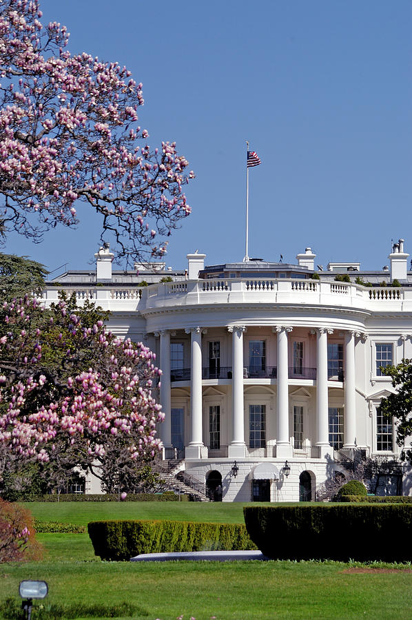 Picture Of The White House During Photograph by Dhuss
