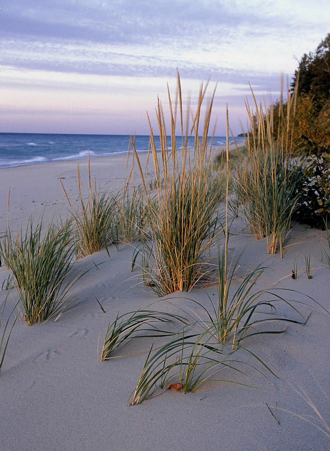 Pictured Rocks National Lakeshore. Lake Photograph by Ed Reschke
