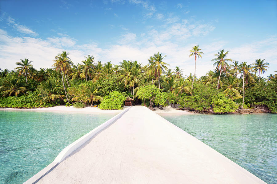 Pier To Tropical Island In The Maldives Photograph by Matteo Colombo