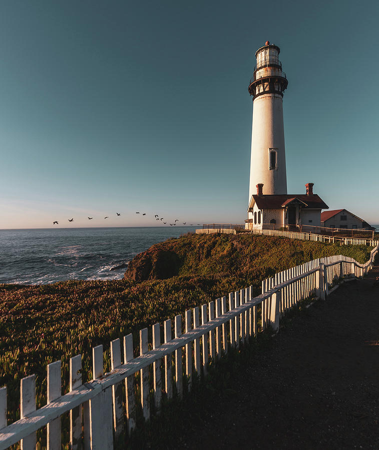 Pigeon Point Light Station Morning Warmth by Donnie Whitaker