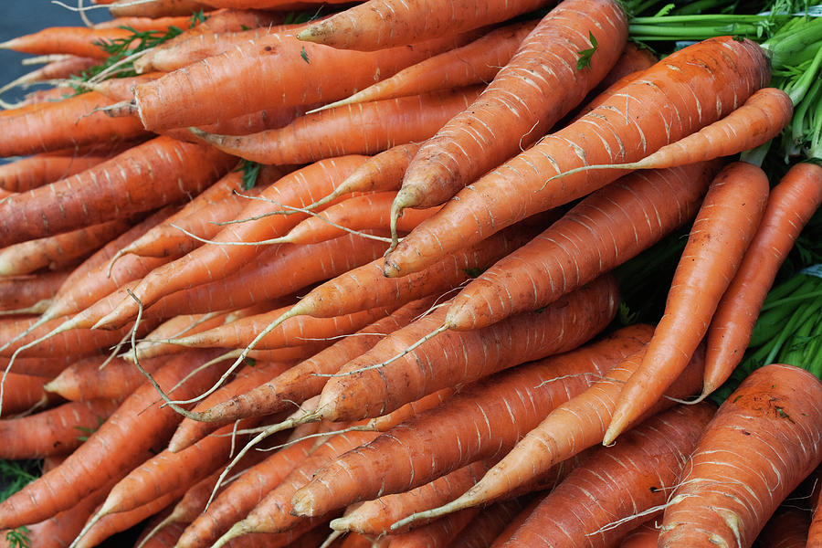Pile Of Organic Carrots At Farmers Photograph by Roy Hsu
